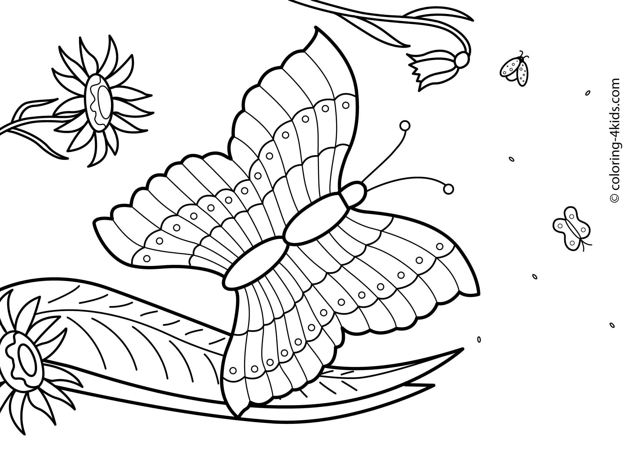 Butterfly Summer Coloring Pages For Kids Free Printable