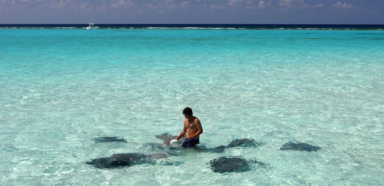 Естественные бассейны карибского моря фото