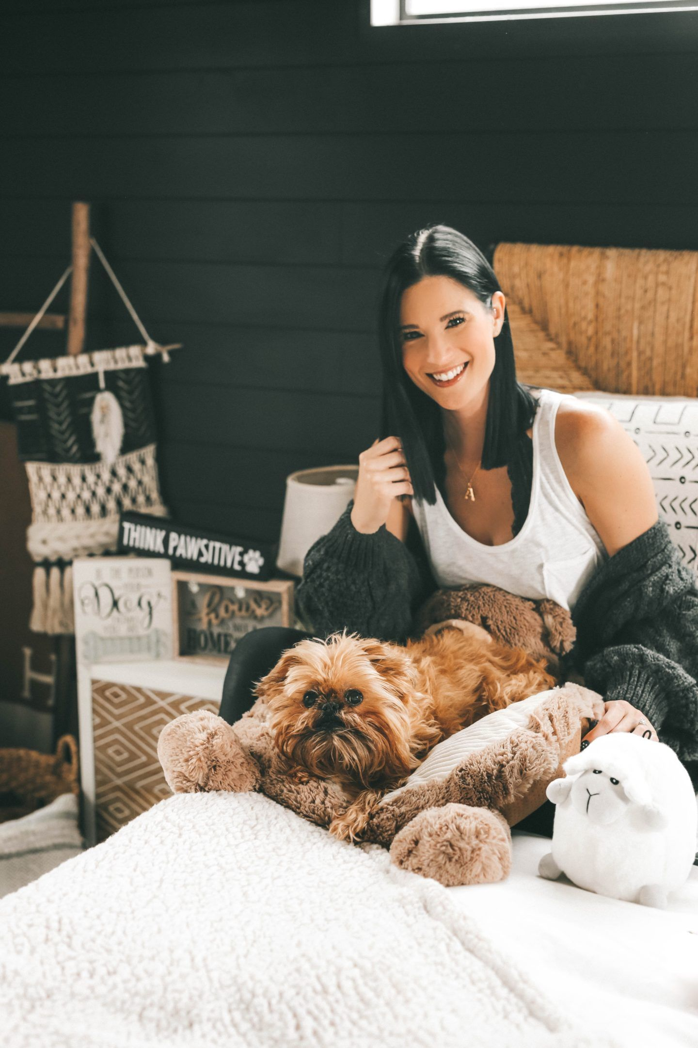 Pamper Your Pet On A Budget In 2020 Your Pet Pets Pet Hacks