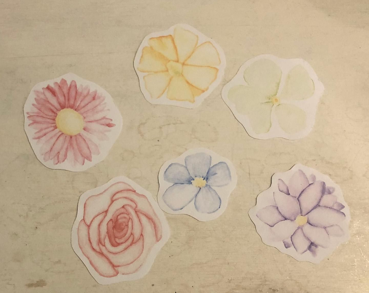 Made some stickers out of some watercolor flowers I did over the weekend ~ ~ ~ ~ ~ ~ ~ ~ ~ ~ #art #artist #artwork #instaart #arte #artistsoninstagram #artofvisuals #artoftheday #artsy #fineart #artistic #artists #arts #artgallery #artistsofinstagram #procreate #stickers #printed #watercolor #flowers #colorful #formybulletjournal #bulletjournal #lotsofpaper #longprocess #lotsofflowers #sticky #givemeideas #imrunningoutofideas #quarantineart
