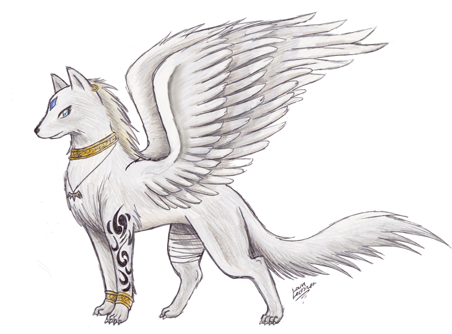 1000 Images About Wolf With Wings On Pinterest Wolves Anime Wolf And Wings Cute Wolf Drawings Wolf Drawing Creature Drawings