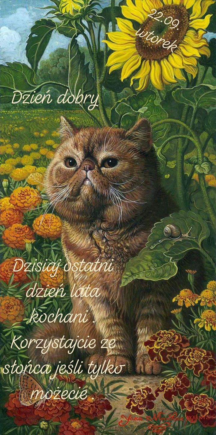 Pin By Anna Leszczyk On Dzien Dobry In 2020 Cats Illustration Cat Art Painting