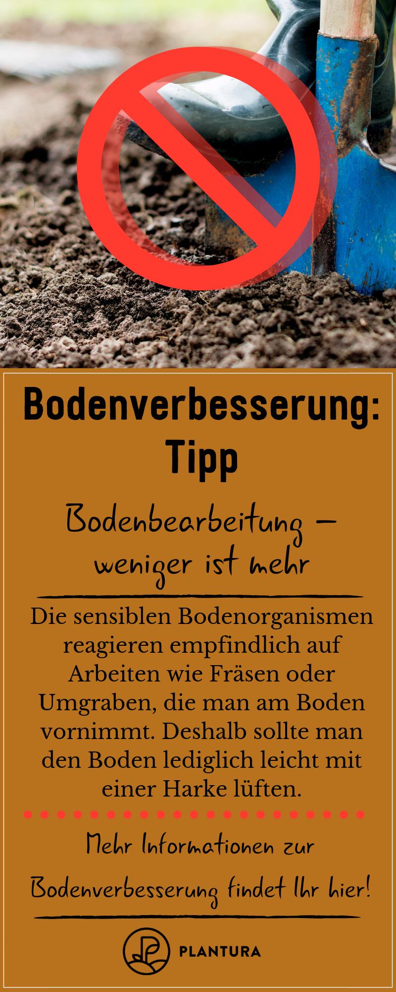 Bodenverbesserung Tipps Um Den Gartenboden Zu Verbessern Gartenboden Garten Tipps