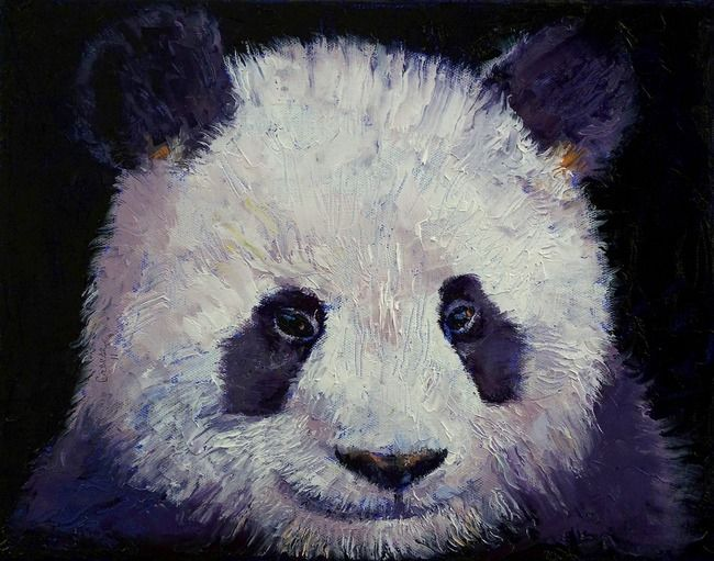 Baby Panda By Michael Creese Panda Art Canvas Prints Painting