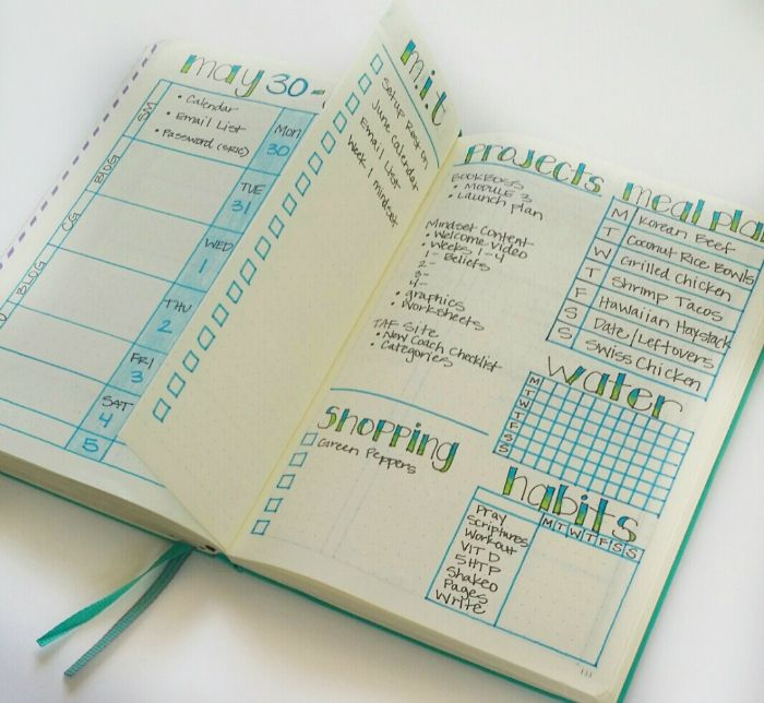 Bullet Journal Weekly Layout Ideas | Bullet Journals ...