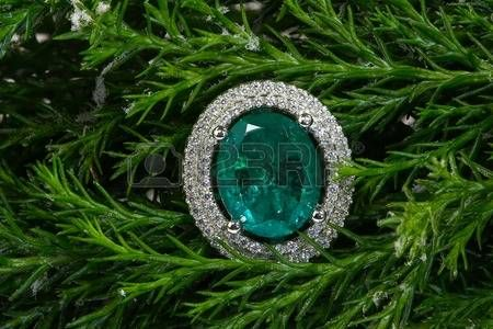 emeraude ET DIAMANTS: Emerald ring with diamonds on a green tree Banque d