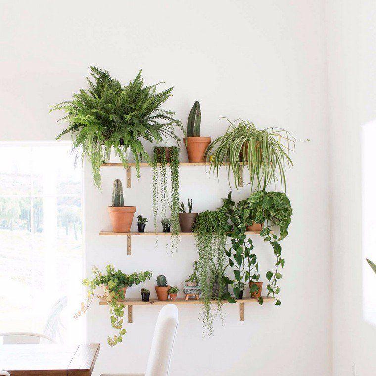 Fabriquer un mur v g tal int rieur id e brico d co plantes pots cuisines pinterest - Fabriquer un mur vegetal ...