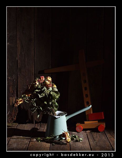 fotografie - stilleven met verdroogde roosjes in kannetje