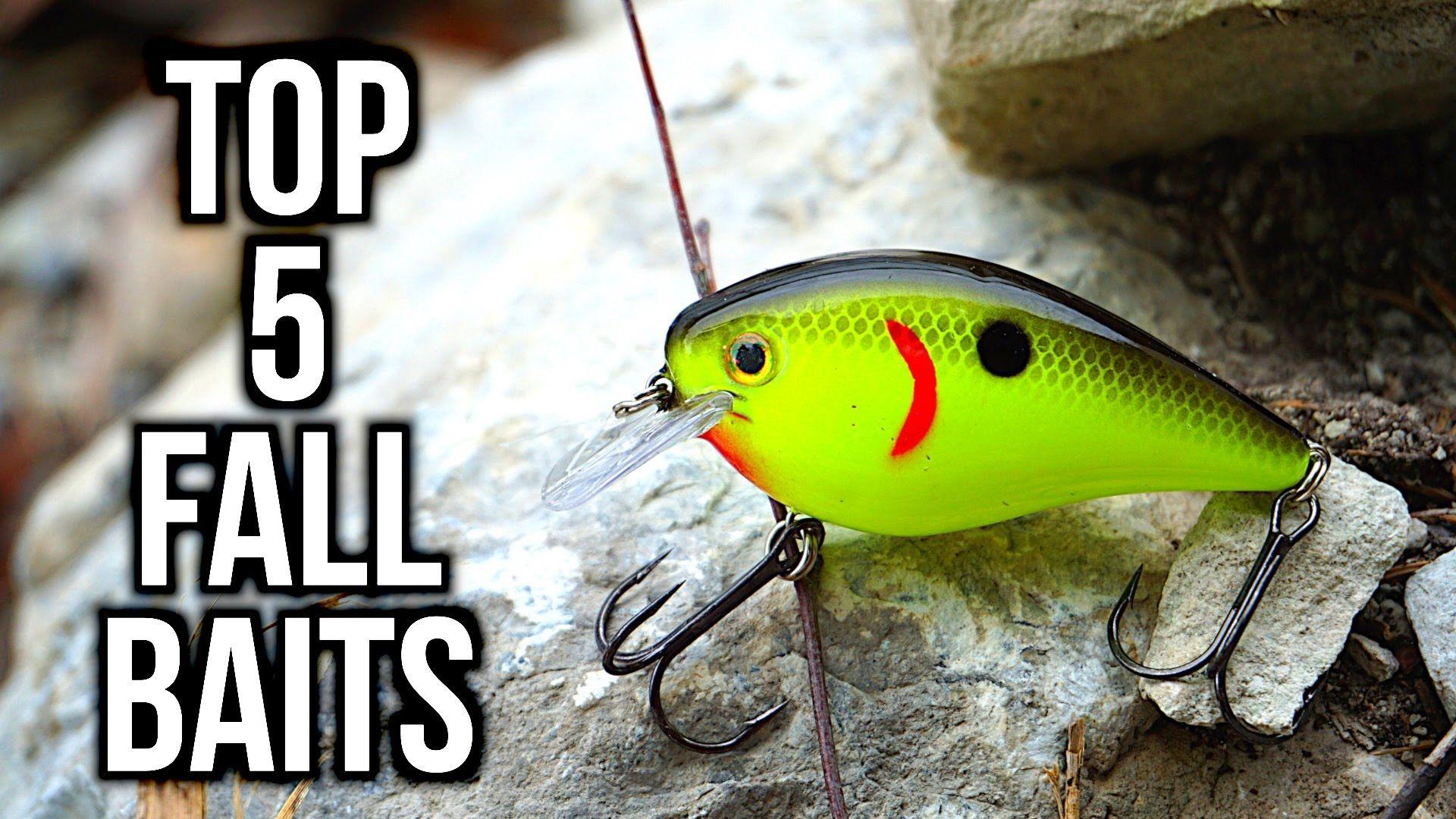 Fishing Uk Top 5 Fall Bass Fishing Lures Fishing Tips