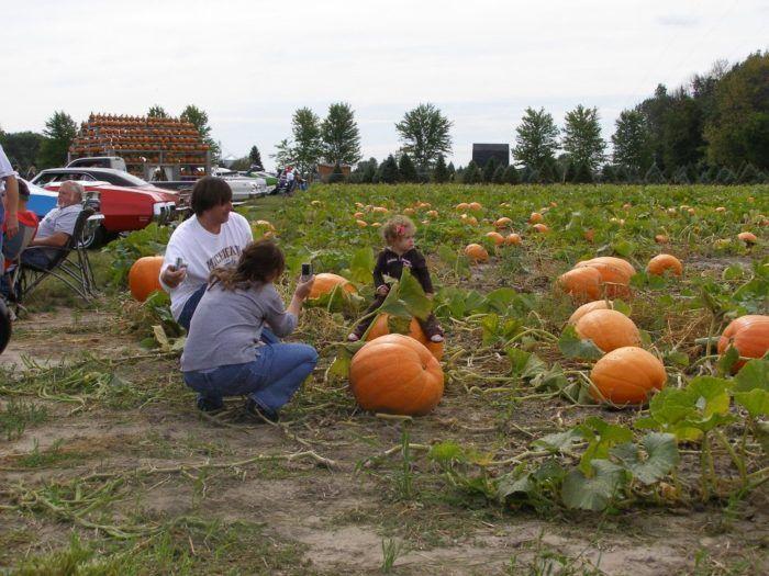 4. Johnson's Giant Pumpkin Farm (4715 N Portsmouth Rd, Saginaw)