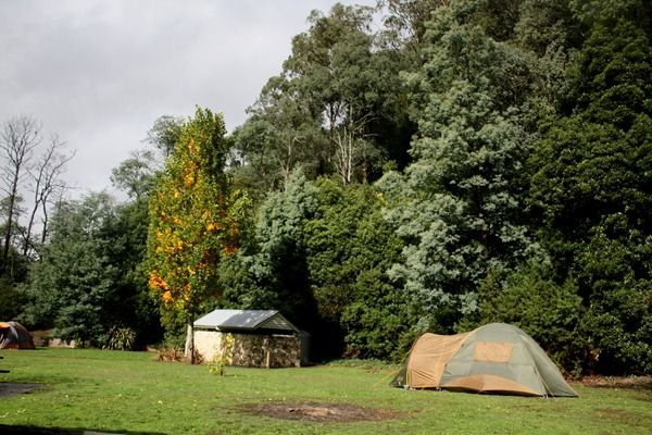 Walhalla camping area, Gippsland, Victoria (With images