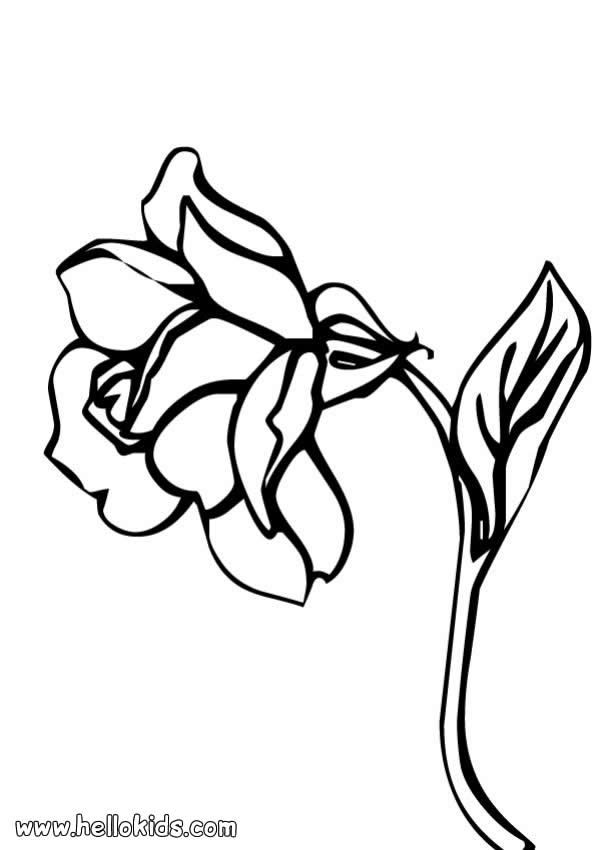 There is the Rose flower coloring page Perfect coloring sheet for - fresh spiderman coloring pages hellokids.com