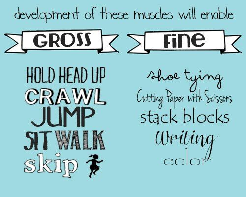 The Difference Between Gross And Fine Motor Skills Preschool Lesson Plans Preschool Lessons Lesson Plans