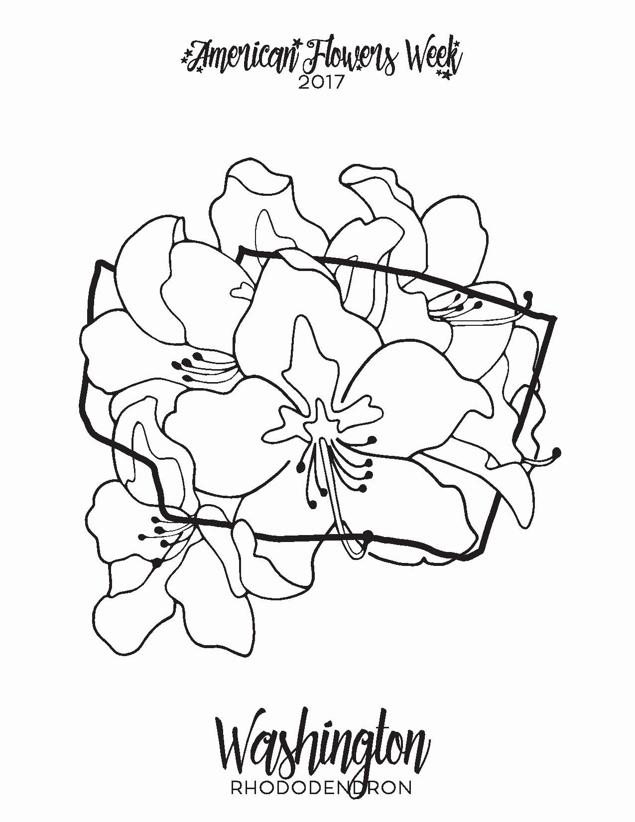 Texas State Flower Coloring Page In 2020 Flower Coloring Pages