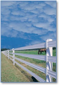 """Centaur HTP. 5""""polymer rail. Continuous loop fencing. Buy and install posts. Addison VT"""
