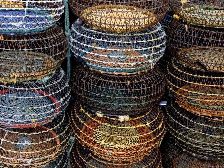 pesca artesanal choco - Pesquisa Google