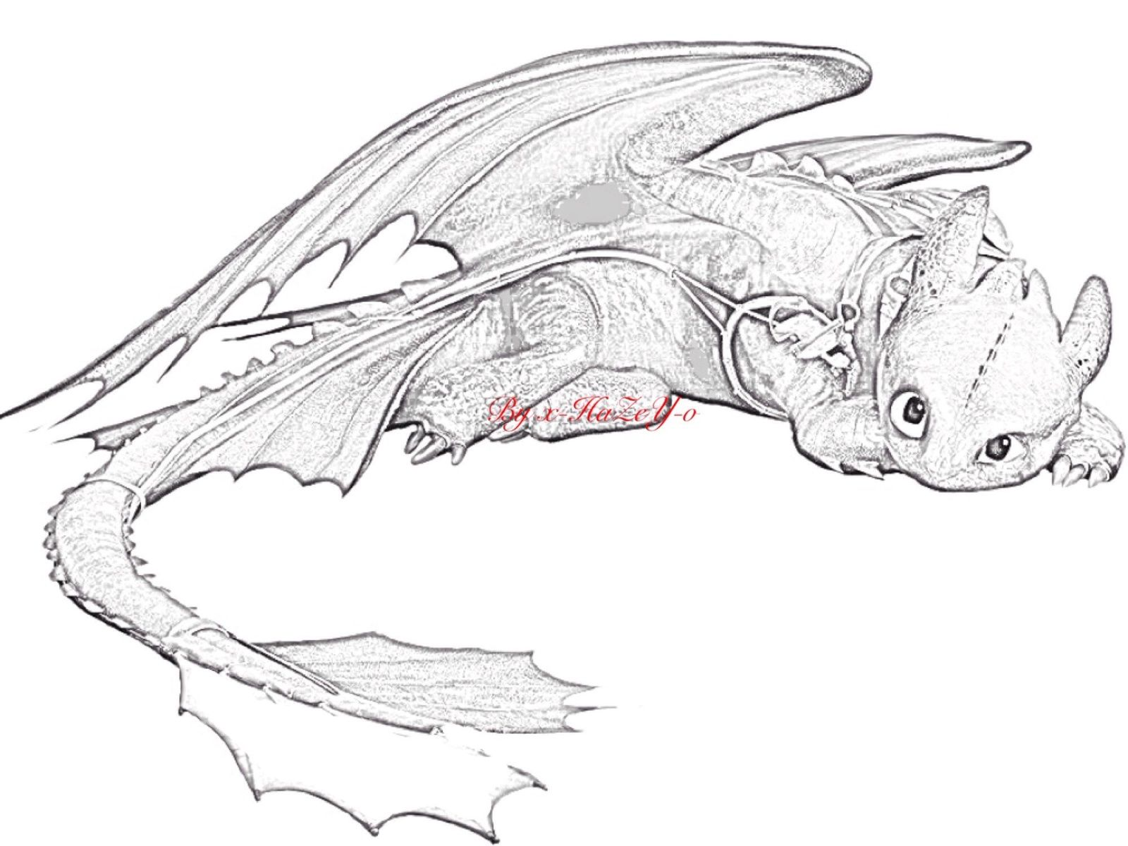 Toothless drawing google search how to train you dragon toothless drawing google search ccuart Image collections