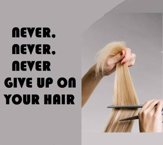 50 of The Best Hairstylist Quotes & Memes – HairstyleCamp #hairstylistquotes 50 of The Best Hairstylist Quotes & Memes – HairstyleCamp #hairstylistquotes 50 of The Best Hairstylist Quotes & Memes – HairstyleCamp #hairstylistquotes 50 of The Best Hairstylist Quotes & Memes – HairstyleCamp #hairstylistquotes