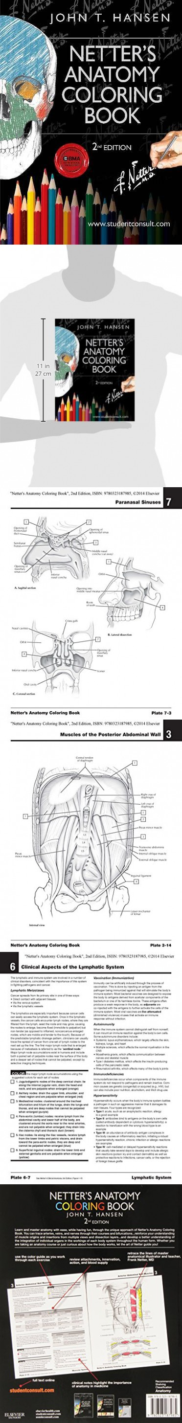 Netters Anatomy Coloring Book 2nd Edition