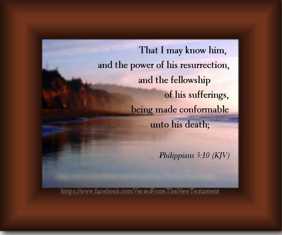 Philippians 3:10 (KJV) | Bible king james version, Holy bible king james, Kjv