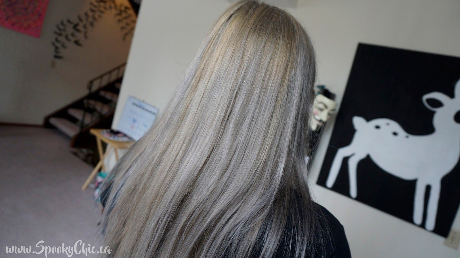 Chrome Before After With Ion Chrome Demi Permanent Creme Hair Color In Chrome Spooky Chic Chrome Hair Color Ion Hair Colors Demi Permanent