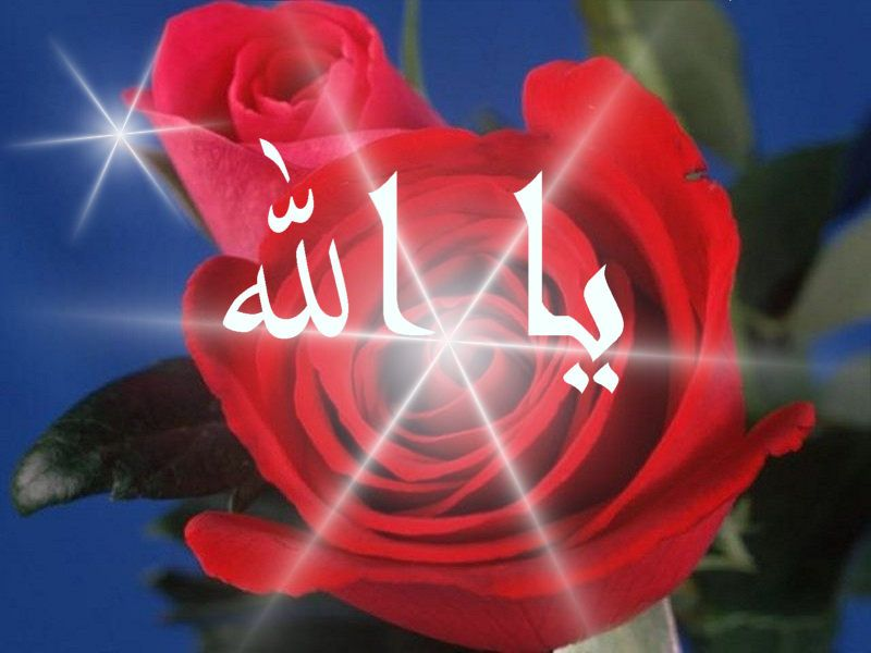 Authentic Supplications From The Sunnah In Arabic And English Dua In Arabic Allah Neon Signs