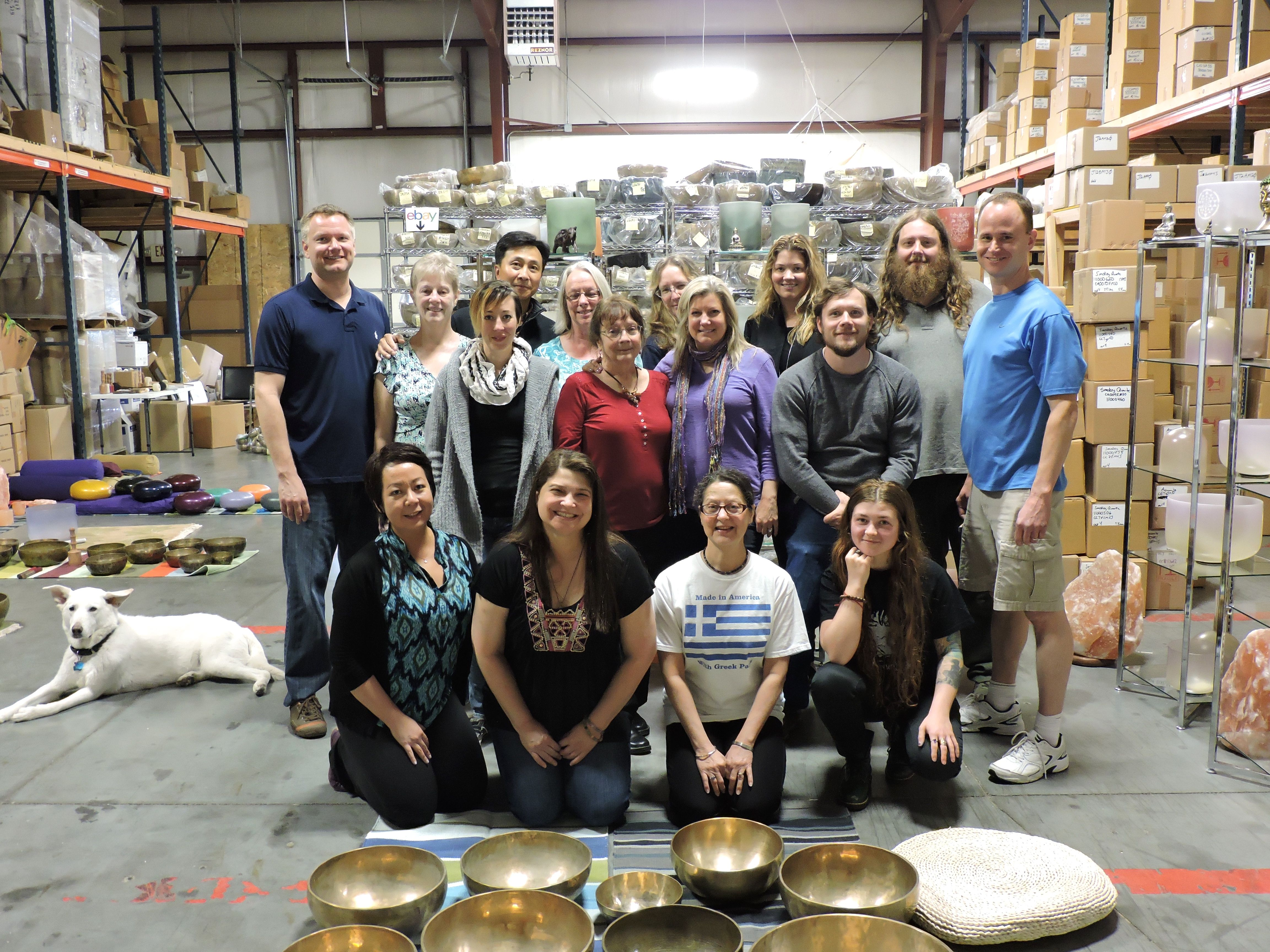 Vsa Singing Bowl Vibrational Sound Therapy Certification Course