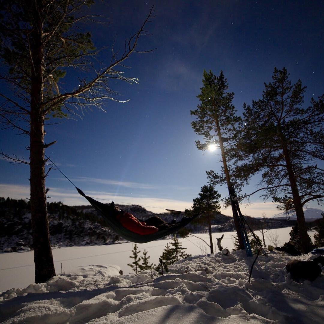 Starta påska mellom to furubusker  ___ Easter is here  ___________________________________________________ #ig_myshot #ig_norway #stars #harstad #furu #fullmoon #easter #soveute #hengekøye #hammocklife #stargazing #fullmåne #dreamchasersnorway #ig_nordnorge #nrktroms #winterwonderland#coldweather #outdoors #nightphotography #liveterbestute #ute #visitnorway #ig_scandinavia by @turjens