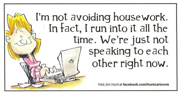 I'm not avoiding housework...