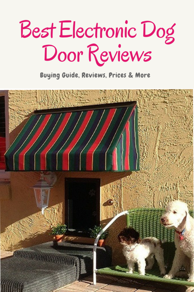 Best Electronic Dog Door Reviews Dog Door Dogs Dog Teeth Cleaning