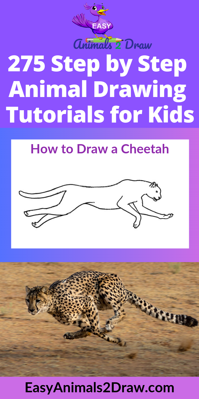 How to draw a Cheetah running step by step