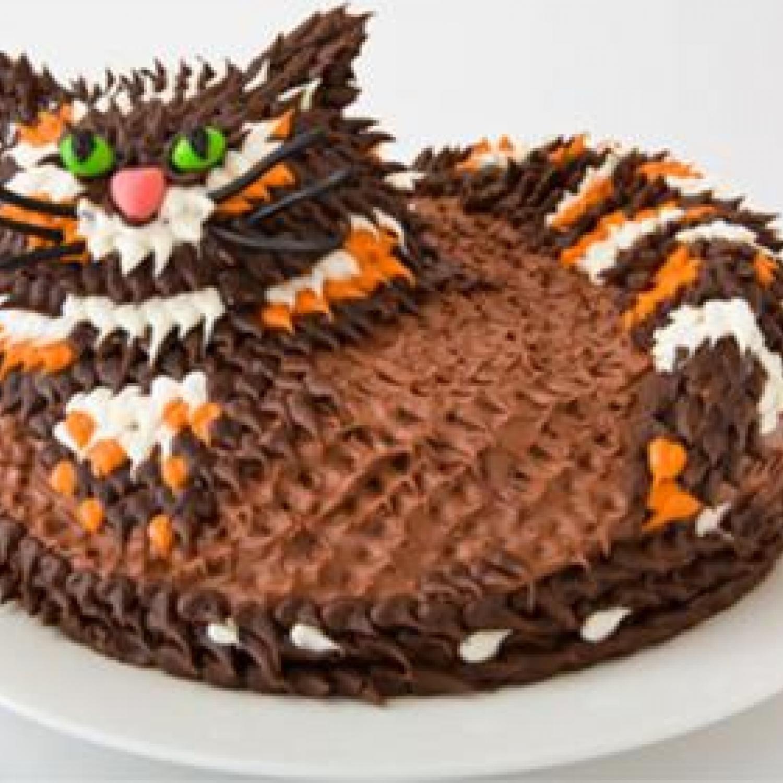 Cat Birthday Cake Design Birthday cakes Cake and Birthday cake