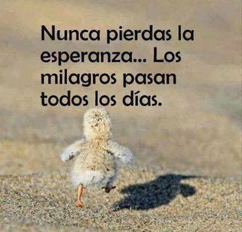Best Imagenes De Esperanza De Amor Para Facebook Image Collection