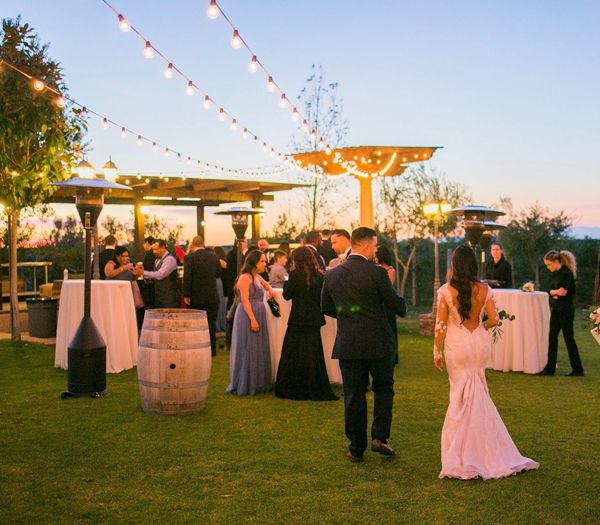 Sarah Chris Chose Mount Palomar Winery For Their Destination Wedding These Two With Their Fam Wine Country Wedding Florida Wedding Venues Temecula Weddings