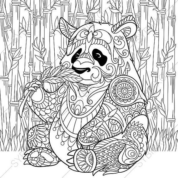 Panda Bear. 2 Coloring Pages. Animal coloring book pages for Adults. Instant Download Print