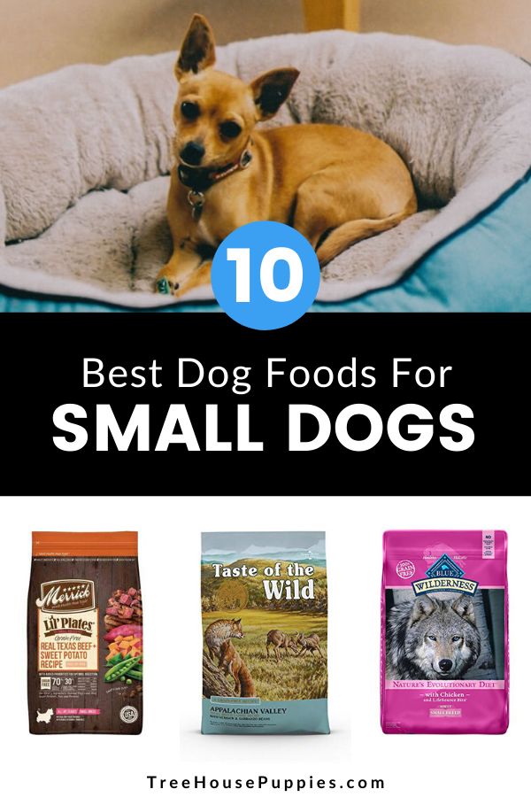 10 Best Dog Foods For Small Dogs In 2020 Treehouse Puppies In 2020 Best Dog Food Dog Food Recipes Small Dogs