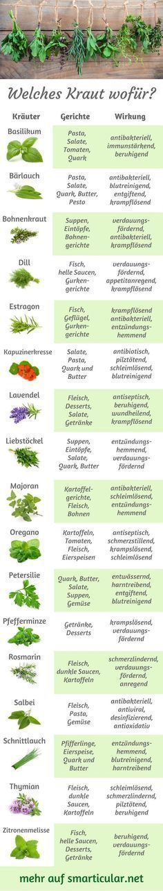 Photo of Kitchen herbs ABC: which herb for what, what goes with what?