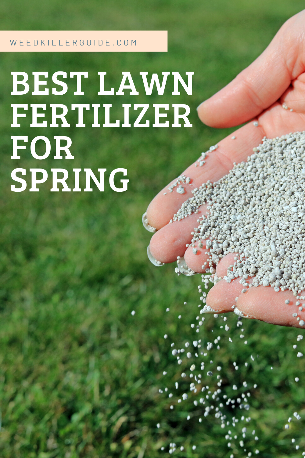 Best Lawn Fertilizer For Spring In 2020 Our Reviews And Comparisons In 2020 Lawn Fertilizer Spring Lawn Fertilizer Scotts Lawn Fertilizer
