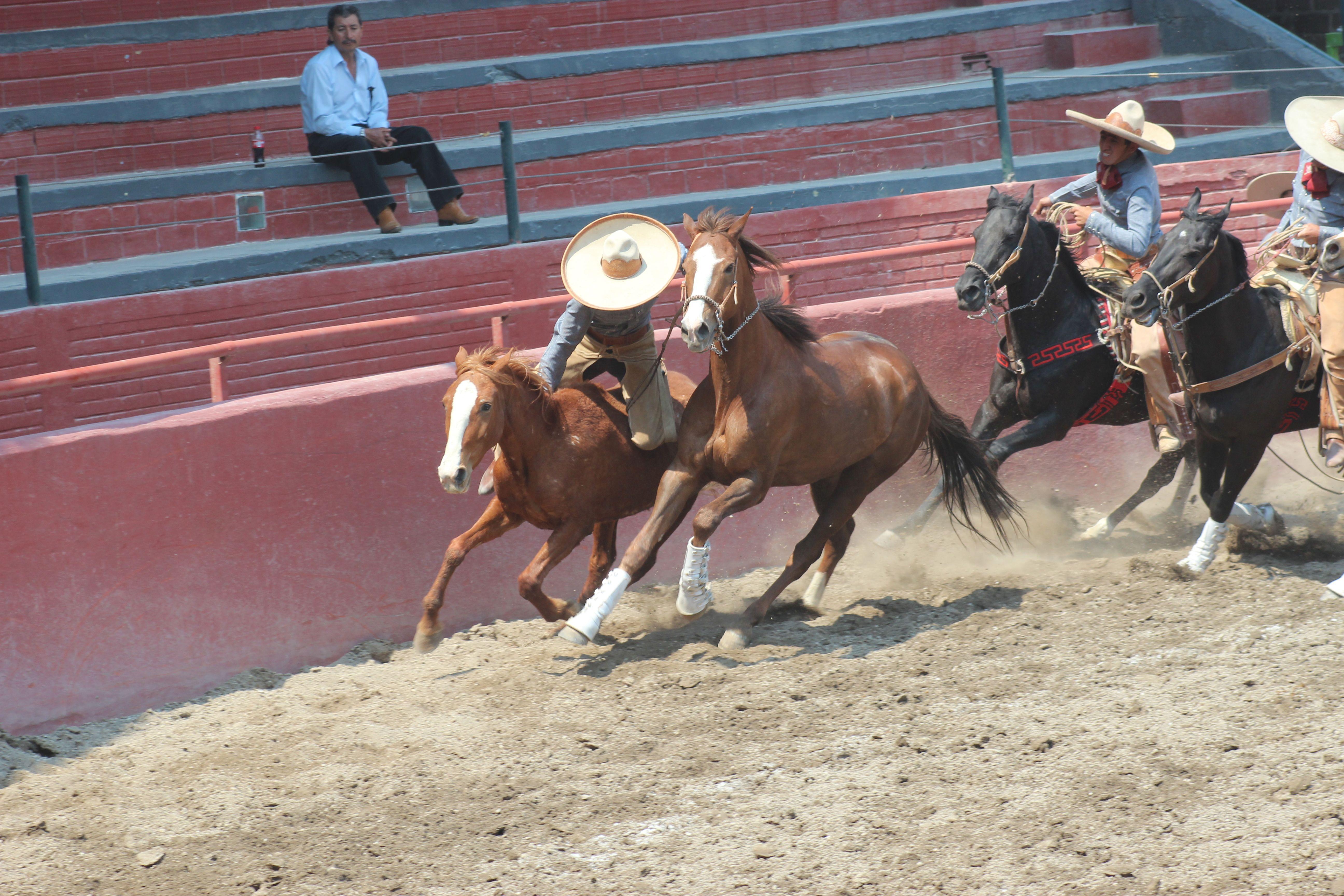 Lienzo Charro en Tlaxcala de Xicohtencatl, Tlaxcala