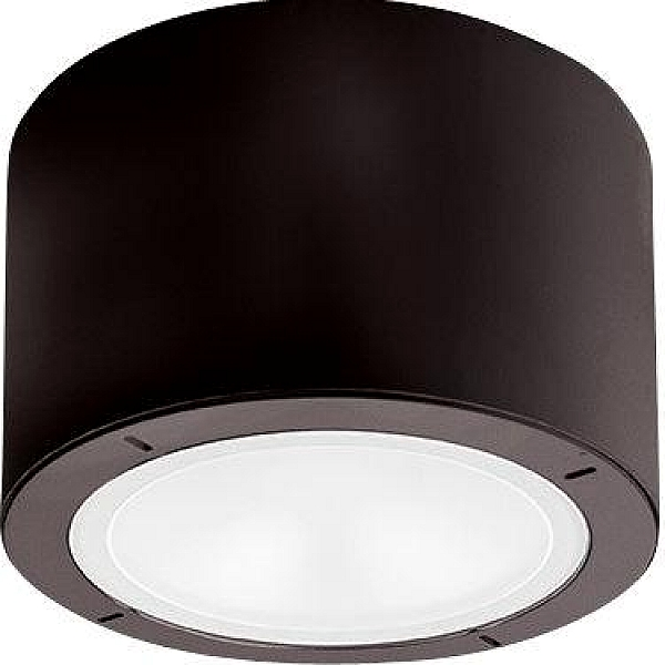 Vessel Led Flush Mount Outdoor Ceiling
