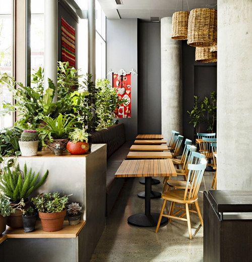 Plants ombre chairs basket lights concrete jessica