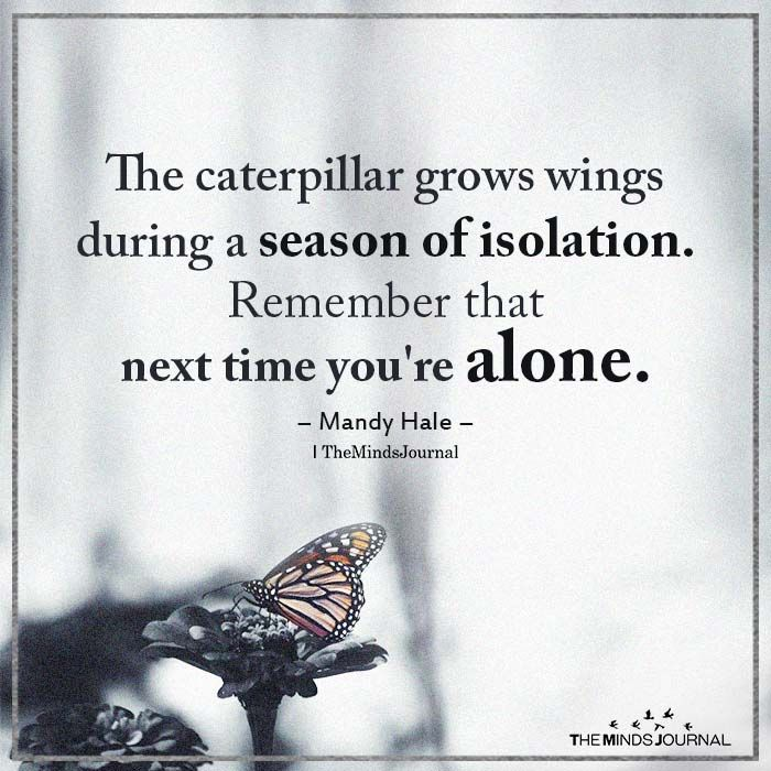 The Caterpillar Grows Wings During A Season Of Isolation.