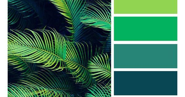 Liked On Pinterest Palettes Of Life Love Of Color Hues Of