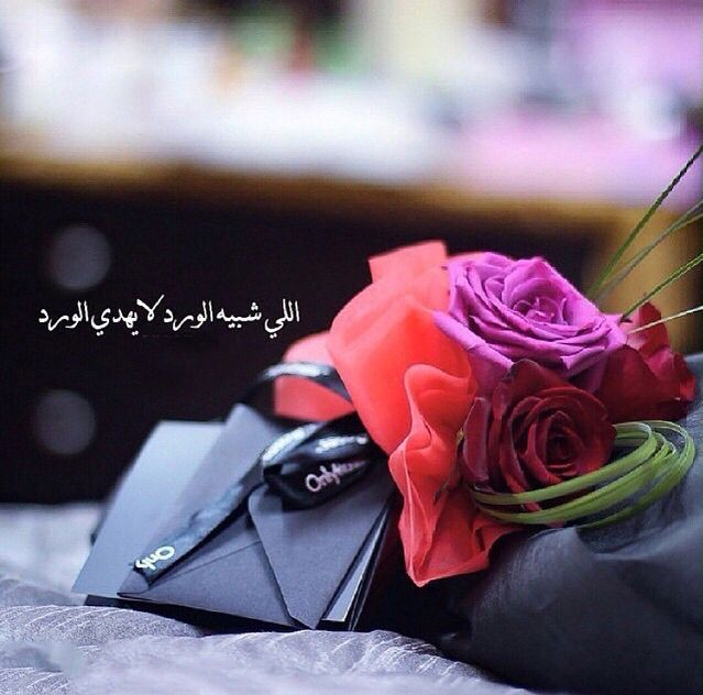 Pin By ʝɛɛɬɛƙ Al3nzii On الورد Flowers Plants