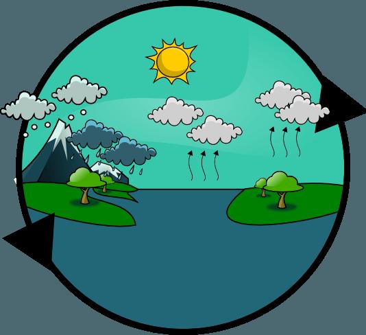 Ciclos Biogeoquímicos | ciclo del carbono | Pinterest | Ciclo del ...