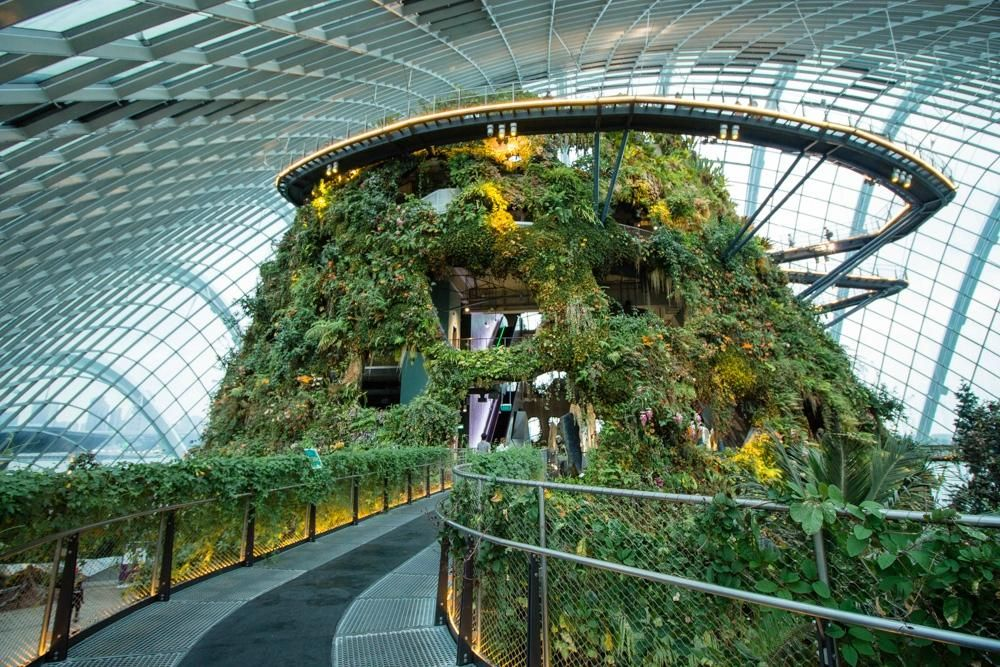 The Conservatory Complex At Gardens By The Bay Comprises Two Cooled Conservatories The Flower Dome And The Cloud Gardens By The Bay Forest Pictures Singapore