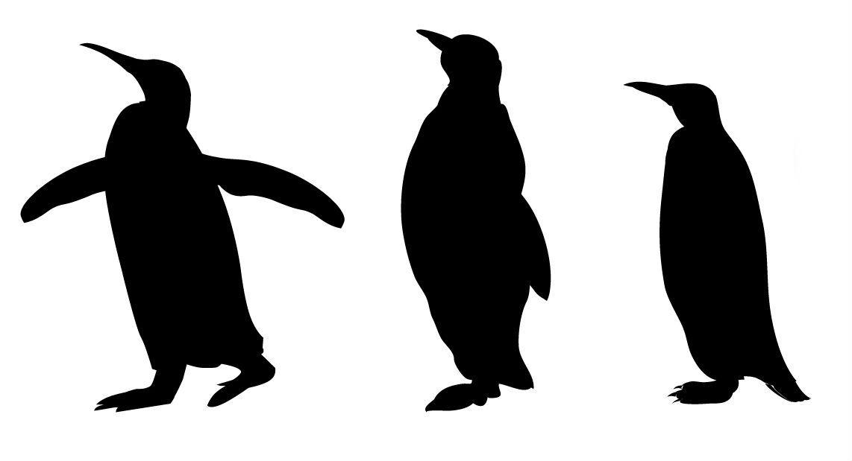 silhouettes | animal silhouettes | beauty silueto | pinterest