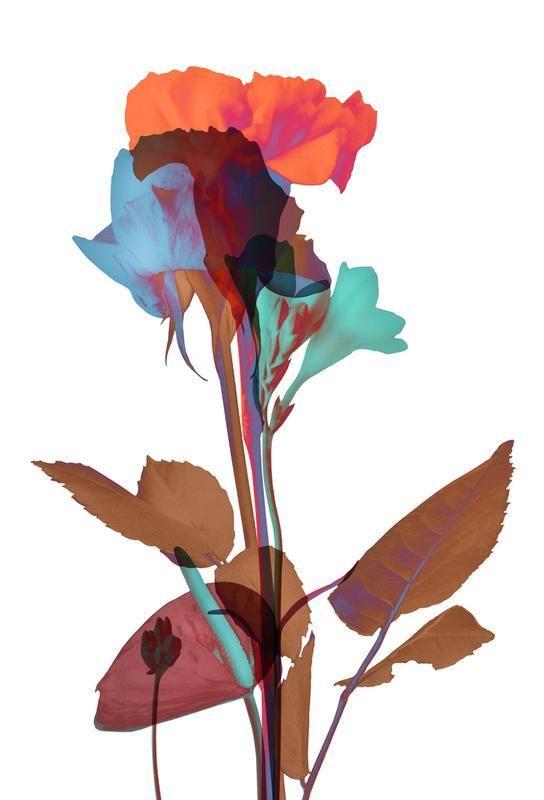 Schön Ode Aux Fleurs (Orange Blue Mint) Alu Dibond Druck Jetzt Bestellen Unter:  Https://moebel.ladendirekt.de/dekoration/bilder Und Rahmen/poster/?uidu003d5fu2026