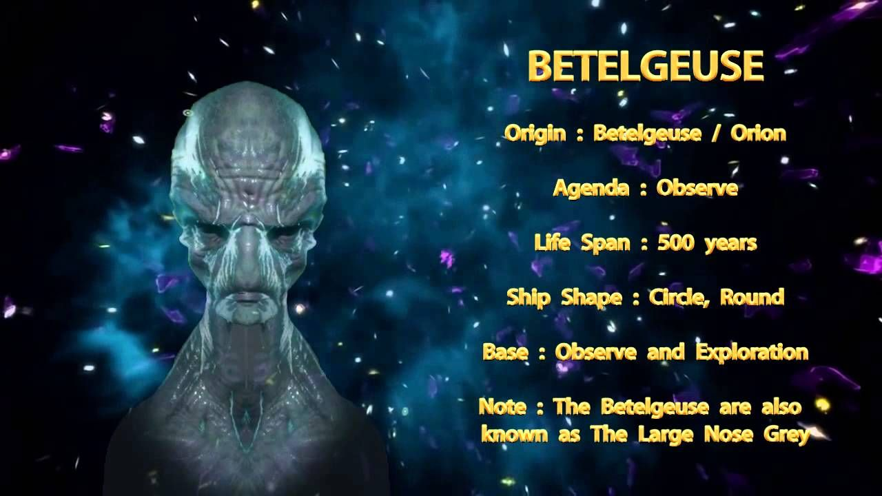 Photo of THE STAR RACES – BETELGEUSE