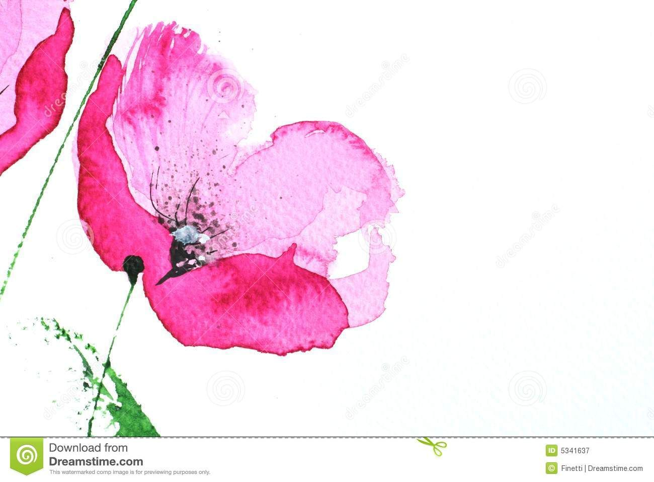 Floral Art Pinterest Watercolour Pink Poppy Flower Royalty Free